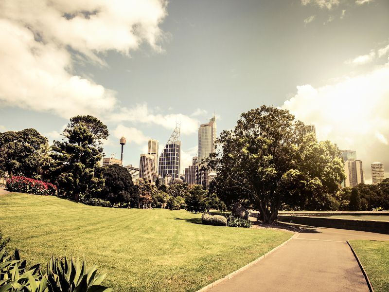 sydney cityscape from royal botanic gardens
