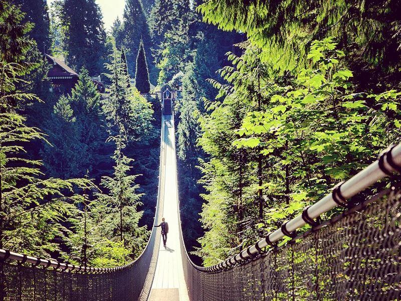 the suspension bridge at capilano park