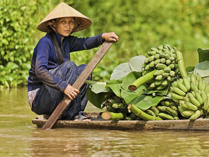 vietnamese woman rowing boat in the mekong river delta