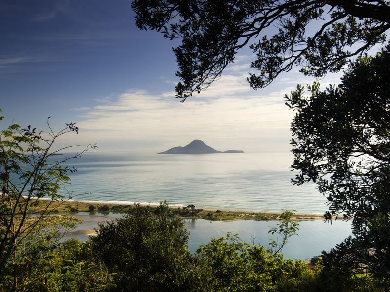view of whale island from whakatane
