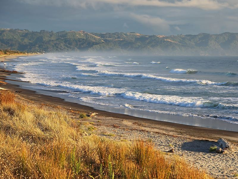 waihi beach bay of plenty