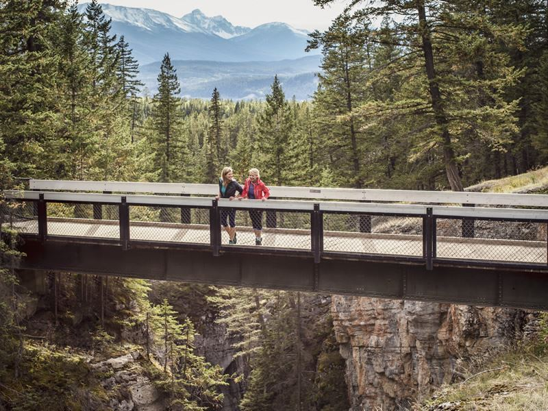 walking in the forest over maligne canyon in jasper national park