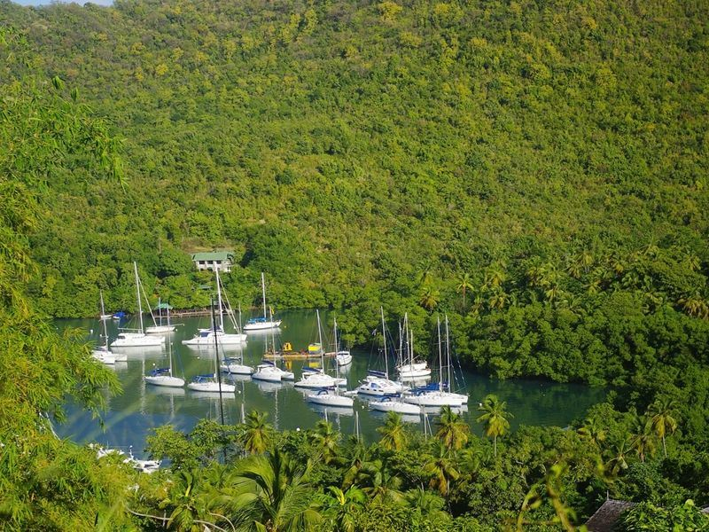 yachts in marigot bay st lucia
